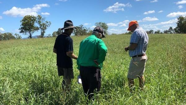BIODIVERSITY in grazing field day